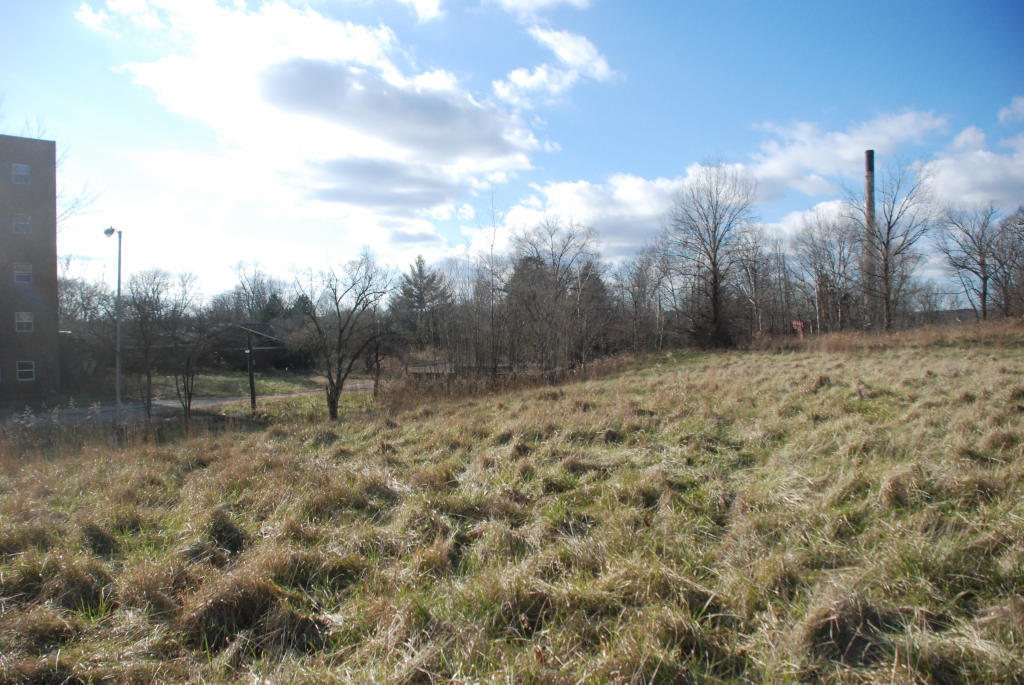 A gently sloping field north of the Hospital